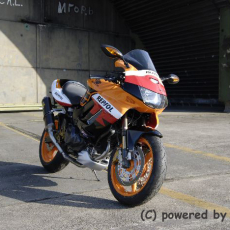 Repsol-VTR-Powered-by-Higgens-24